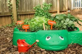 Gardening Craft Ideas 20 Mini Gardening Projects Will Hgtv