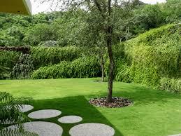 refresh your landscape u2013 start your own vertical garden genus