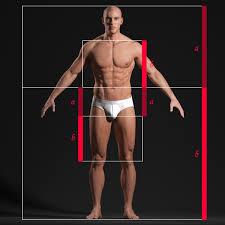 3d Human Anatomy Male Body Anatomy Study Andor Kollar Character Artist