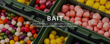 fishing rods reels nets clothing accessories bait carp