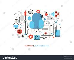 thin line flat design experimental plant stock vector 300116468