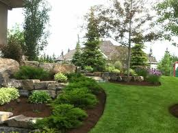 Backyard Pictures Ideas Landscape Best 25 Evergreen Landscape Ideas On Pinterest Evergreen Garden