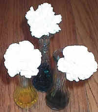 colored carnations science experiment