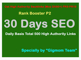 rank booster p2 30 days seo daily basis total 22 500 high