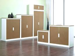 shallow wall cabinets with doors tall storage cabinet 11 3 4 deep 90 high 12 wide for two doors 12