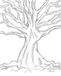 tree drawing formák vonalak színek pinterest pencil sketch