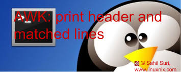 pattern matching using awk exles awk print header line and pattern match the linux juggernaut