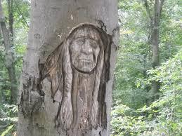 tree face tree face 2 by ri chan and oka chan on deviantart