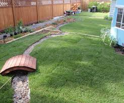 restore a backyard with dead soil before and after 9 steps