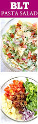 Cold Pasta Salad Recipe Best 25 Pasta Salad Recipes Ideas On Pinterest Pasta Salad