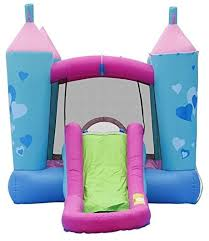 Water Slides Backyard by Pink Princess Inflatable Bounce House Water Slide Combo Backyard