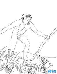 homo habilis making tools by carving pieces of rock coloring pages