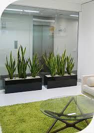planters extraordinary planter box indoor planter box indoor