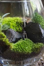 Miniature Gardening Com Cottages C 2 Miniature Gardening Com Cottages C 2 Best 25 Miniature Gardens Ideas On Pinterest Mini Gardens