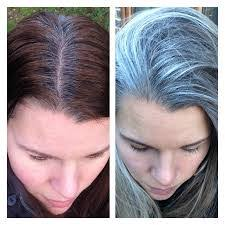 images of grey hair in transisition image result for transition to grey hair with highlights new