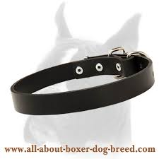 Comfortable Dog Collar Wide And Comfortable Boxer Leather Dog Collar C2 1035 Leather