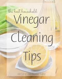 cleaning tips vinegar cleaning tips around my family table