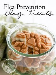 homemade flea prevention dog treats 2 ingredients u0026 grain free