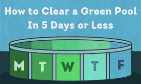 to clear a green pool in 5 days or less