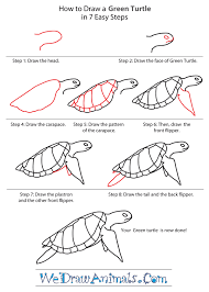 how to draw a green turtle