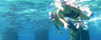 Wyoming snorkeling images Home page divedoggie jpg