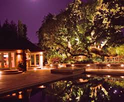 Landscape Tree Lights Landscape Lighting Landscaping Network