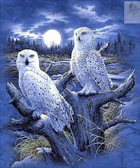 Diamond Home Decor by Two Owl And Moon Full Drill Diamond Embroidery Painting Cross
