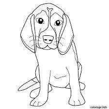coloriage chien beagle jecolorie com