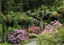 Types Of Botanical Gardens by Glacier Gardens Rainforest Adventures Juneau Alaska Botanical