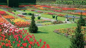 chelsea flower show and gardens a british tradition