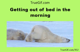 Get Out Of Bed Meme - getting out of bed in the morning