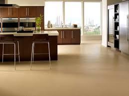 types of kitchen flooring ideas flooring ideas appealing types of flooring for kitchen terrific