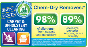 professional upholstery cleaning snyder s chem