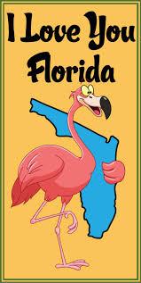 best 10 south florida ideas on pinterest florida miami florida