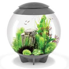 baby biorb replacement light unit halo 60l grey aquarium with moonlight led lighting