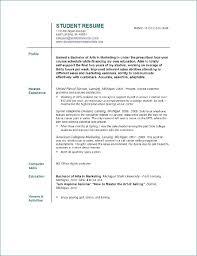 exle of resume template sle resumes templates ceciliaekici