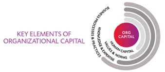 Organizational Measuring Organizational Capital The Center For Global Enterprise