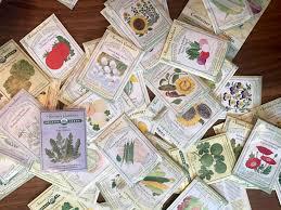 the best soil for abundant life kelly minter