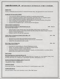 Changing Careers Resume Samples by Resume Summary Examples Http Getresumetemplate Info 3763