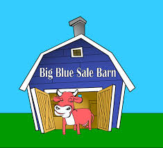 Sale Barns In Nebraska Blue Sale Barn Home