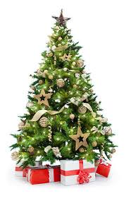 christmas tree images royalty free christmas tree pictures images and stock photos istock