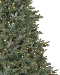 tree fraser fir tree classic fraser fir