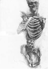 drawn sleleton human form art pencil and in color drawn sleleton