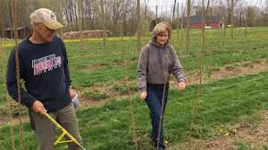 hop growers set trellises youtube