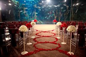 wedding venues in ta fl florida aquarium wedding packages wedding ideas 2018