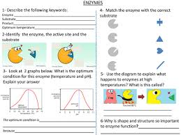 cells lesson 4 movement of substances in and out of cells