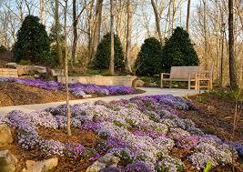 Botanical Gardens In Atlanta Ga by Smithgall Woodland Garden Garden Design