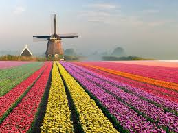flower places 20 places that are out of fairy tales photos condé