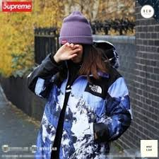 North Face Jacket Meme - the north face x supreme cotton softshell jacket for sale