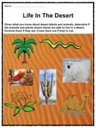 desert facts worksheets u0026 cold climate information for kids